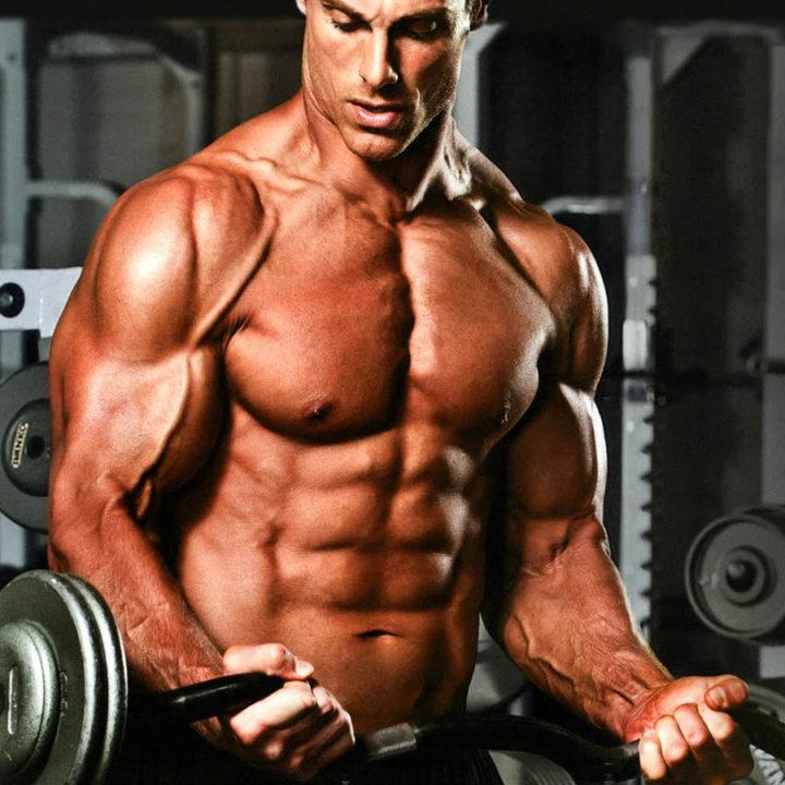 tribulus-terrestris-ganho-de-massa-muscular
